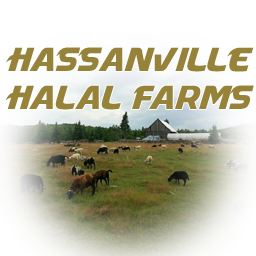Hassanville Halal Farms
